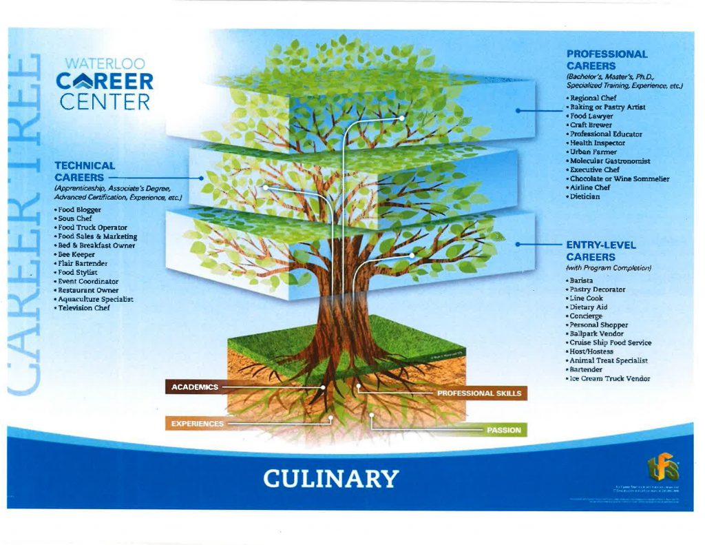 Culinary Career Tree