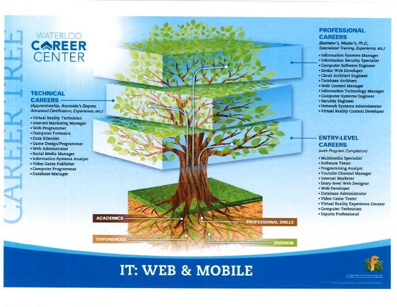 Information Technology Web and Mobile Career Tree